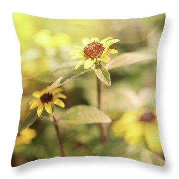 Illuminated Zinnia Throw Pillow