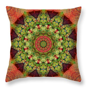 Throw Pillow featuring the photograph Illumination by Bell And Todd