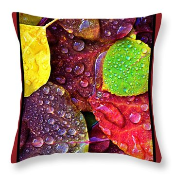 Illuminous Colour Throw Pillow by Sheila Mcdonald