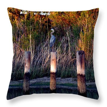 Illusion Throw Pillow by Clayton Bruster