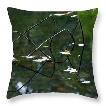 Illusion   Throw Pillow by Jane Eleanor Nicholas