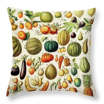 Illustration Of Fruit Throw Pillow