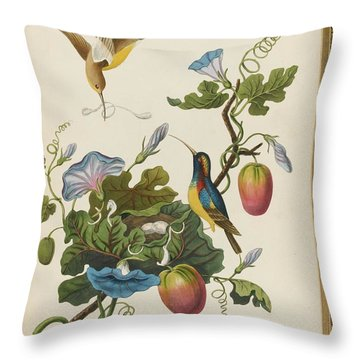 Illustrations To Oriental Memoirs Throw Pillow
