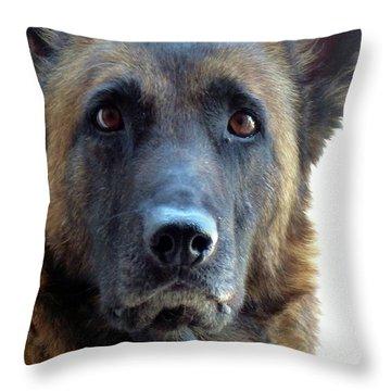 I'm A Beauty Throw Pillow