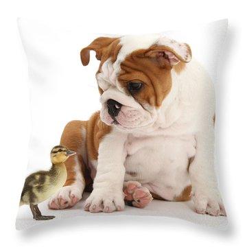 I'm A Quack Of All Trades Throw Pillow