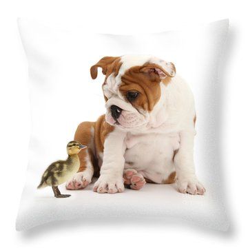 I'm A Quack Of All Trades Throw Pillow