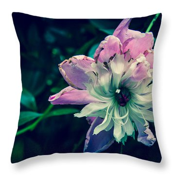 I'm Dying Over Here  Throw Pillow by Off The Beaten Path Photography - Andrew Alexander