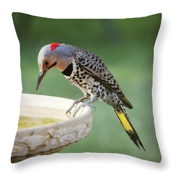 I See My Reflection Throw Pillow