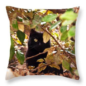 I'm Hiding Throw Pillow