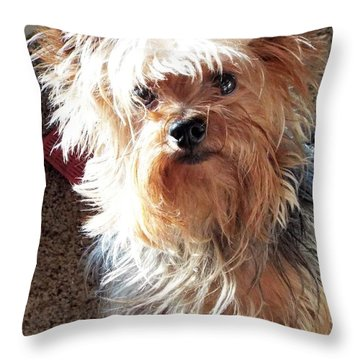 Im Hungry You Hungry? Throw Pillow