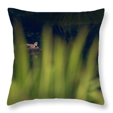 I'm Looking Through You Throw Pillow