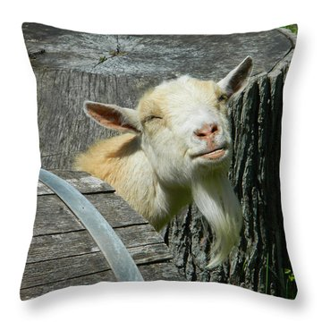 I'm Lucy - I Like You Throw Pillow