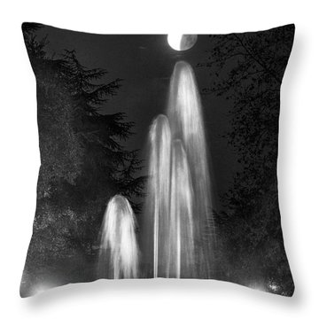 Throw Pillow featuring the photograph I'm Not Giving Up On You by Quality HDR Photography