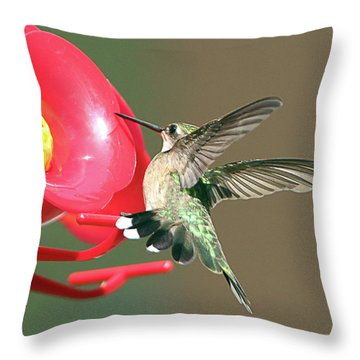 I'm Out Of Here Throw Pillow