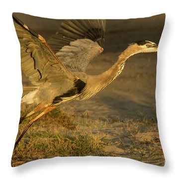 I'm Out Of Here Wildlife Art By Kaylyn Franks Throw Pillow