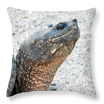 I'm Ready For My Close Up Mr Demille Throw Pillow
