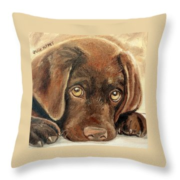 I'm Sorry - Chocolate Lab Puppy Throw Pillow