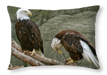 I'm Sorry Throw Pillow by Michael Peychich