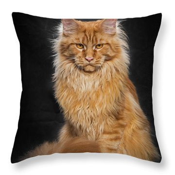 I'm Waiting For You Throw Pillow