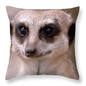 Im Watching You  Throw Pillow