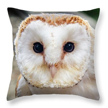 I'm Watching You Throw Pillow