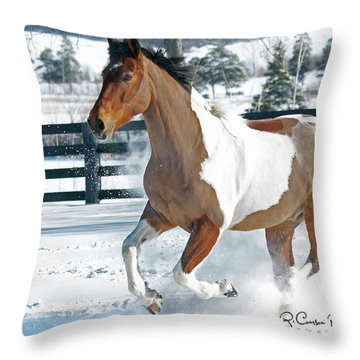 Image #2 Throw Pillow