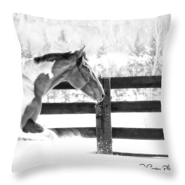 Image #4 Throw Pillow