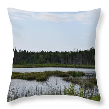 Images From Mt. Desert Island Maine 1 Throw Pillow