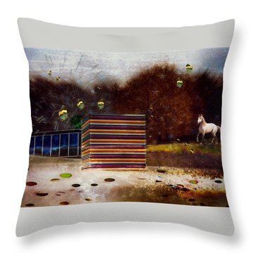 Throw Pillow featuring the photograph Imagine by Richard Ricci