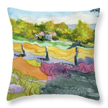 Imagine The Colors Throw Pillow