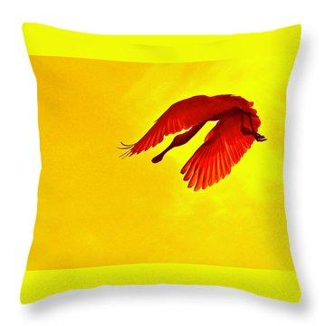 Img_2804 - Version 4 Throw Pillow