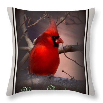 Img_3158-005 - Northern Cardinal Christmas Card Throw Pillow