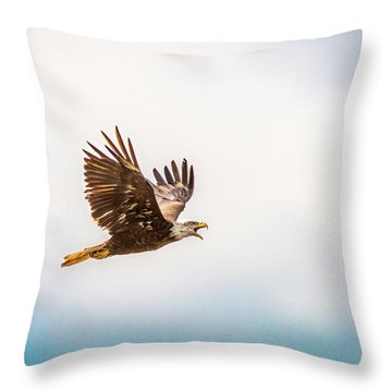 Throw Pillow featuring the photograph Immature Bald Eagle by Onyonet  Photo Studios