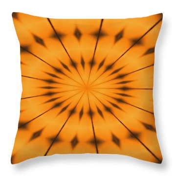 Immersion Throw Pillow by Tom Druin