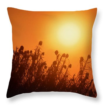 Impalila Island Sunset No. 3 Throw Pillow