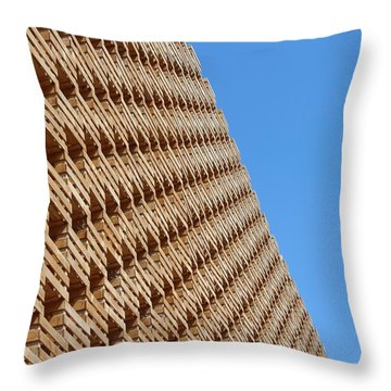 Impatterned Throw Pillow