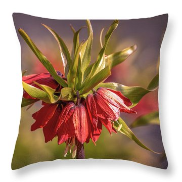 Imperial Crown #g3 Throw Pillow