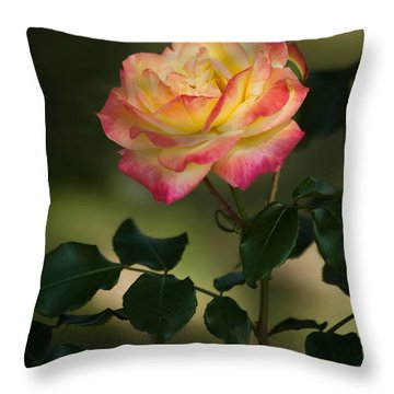 Imposing On Bloom Throw Pillow