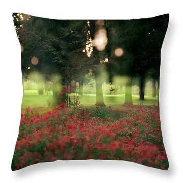 Impression At The Yarkon Park Throw Pillow
