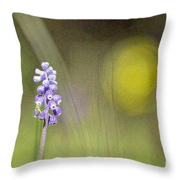 Impression Throw Pillow by Jivko Nakev