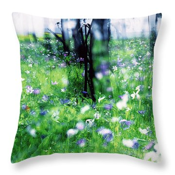 Impressionistic Photography At Meggido 1 Throw Pillow