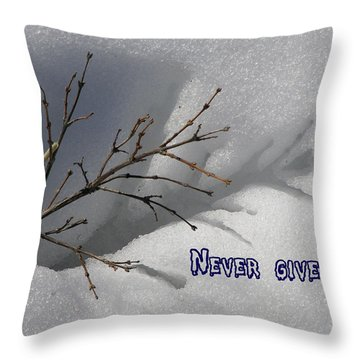 Impressions Never Give Up Throw Pillow by DeeLon Merritt