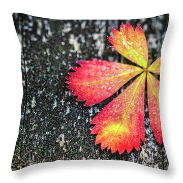 Impressions Of Autumn Throw Pillow
