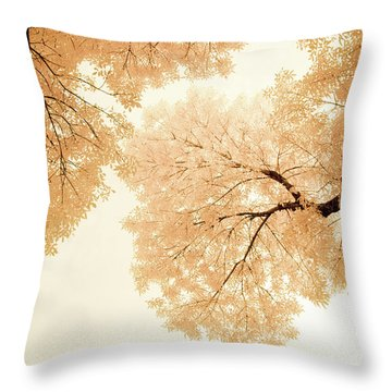 Impressions Of October Throw Pillow