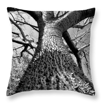 Impressive Throw Pillow by David Lee Thompson