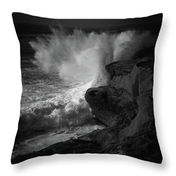 Throw Pillow featuring the photograph Impulse by Ryan Weddle