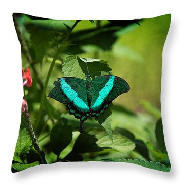 In A Butterfly World Throw Pillow