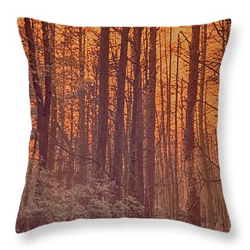 Home Of The Jersey Devil Throw Pillow