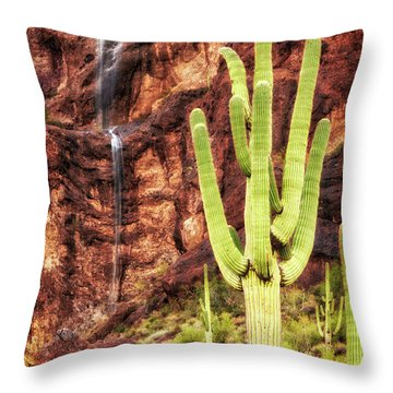In A Dry And Thirsty Land Throw Pillow