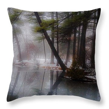 Throw Pillow featuring the photograph In A Fog by Kendall McKernon